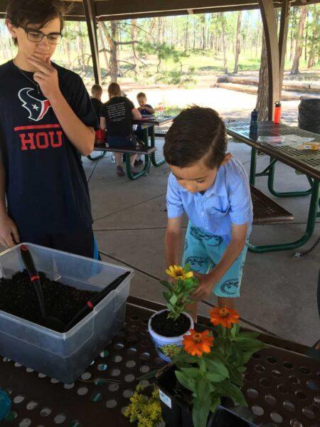 little boy planting flowers